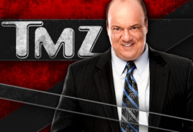 Paul Heyman Talks to TMZ About Brock Lesnar Going to UFC
